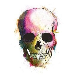 bar and beyond coloured skull logo