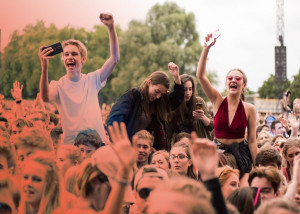 2017_Communityfestival_BenGibson_main-stage-crowd-15522-01-900x600