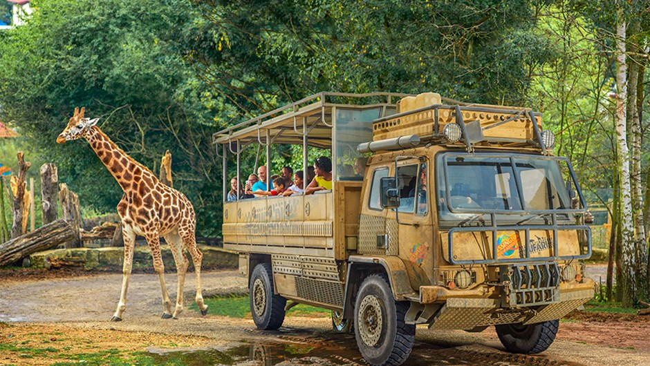 Chessington World of Adventure safari