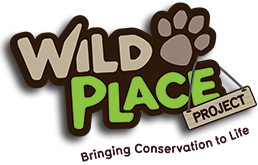 wild place project logo
